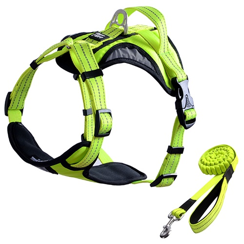 FOREYY Front Range Reflective Dog Harness and Leash Set-Green