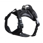 FOREYY Front Range Reflective Dog Harness and Leash Set-Black