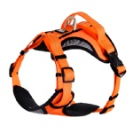 FOREYY Front Range Reflective Dog Harness and Leash Set-Orange